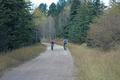 Mickelson Trail Trek Tour in Custer (2)